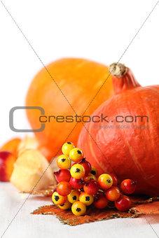Autumn decoration with hokkaido pumpkins