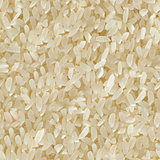 Rice. Seamless Tileable Texture.