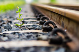 Railway and plant