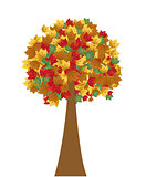 Autumn leaves vector illustration