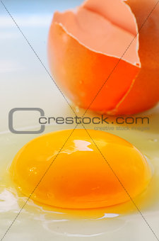 Broken egg isolated