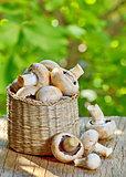 mushrooms in straw basket