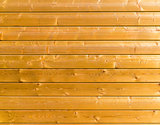 Wood plank yellow texture