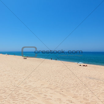 Beautiful tropical beach with bathers