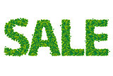 Sale Text With Leaves