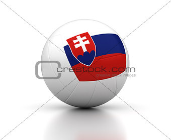 Slovakian Volleyball Team