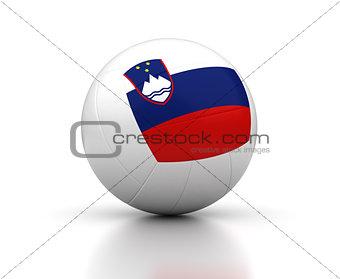 Slovenian Volleyball Team