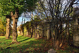 Autumn landscape with old colonade in Catherine garden,