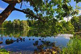 Summer Landscape with lake in Gatchina garden,