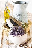 Provence lavender.