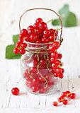 Redcurrant berries.