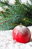 Christmas apple.