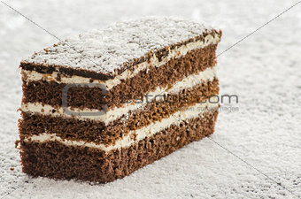 A cake on shredded coconut
