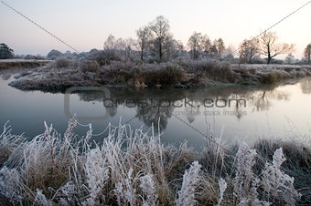 autumn morning with frost