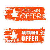 autumn offer drawn banner with fall leaf