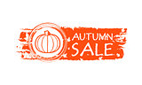 autumn sale drawn banner with pumpkin and fall leaves