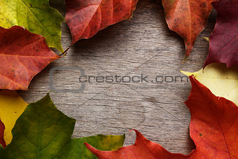 frame from autumn maple leaves on wood surface