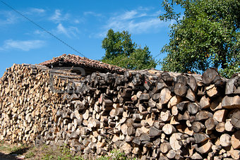 Stacked oak firewood