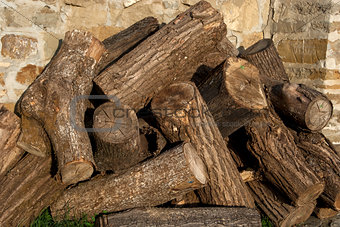 Stacked oak firewood closeup