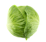 Fresh green cabbage