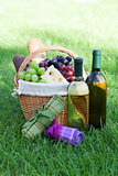 Outdoor picnic basket with wine on lawn