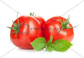 Three ripe tomatoes and basil