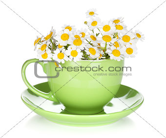 Green tea cup with camomiles