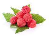 Fresh raspberry heap on leaves