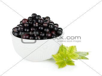 Black currant bowl