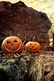 Halloween pumpkins on rocks with leaves and berries
