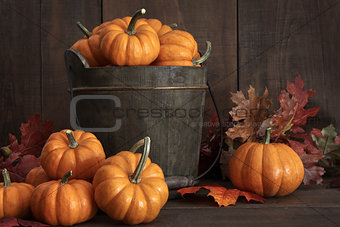 Tiny pumpkins in wooden bucket on table