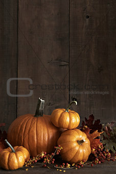 Group of gourds and pumpkin against a wood background