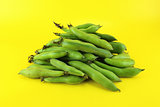 broad bean pods and beans