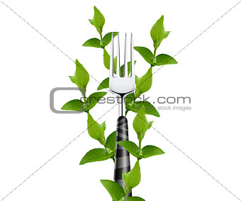 green leaves around fork