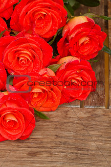 bright orange  roses on wooden table