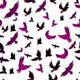Birds in seamless pattern