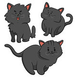Black Cats Trio