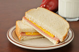 Baloney and cheese sandwich