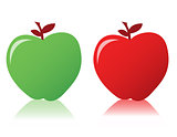 Two fresh apples with leave isolated over a white background. ve