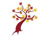 Autumn Tree illustration design over white