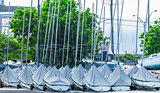 Parked Sailboats