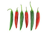 Green and red chili