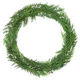 Cedar Cypress Wreath