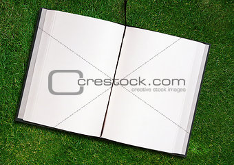blank opened book