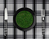 green grass on black plate
