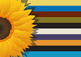 Sunflower abstract card