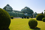 greenhouse at Vienna