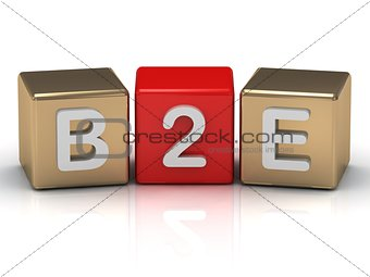 B2E Business to Employee symbol on gold and red cubes