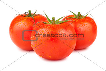 Three ripe red tomatoes with water drops