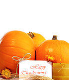 Thanksgiving holiday decorative border